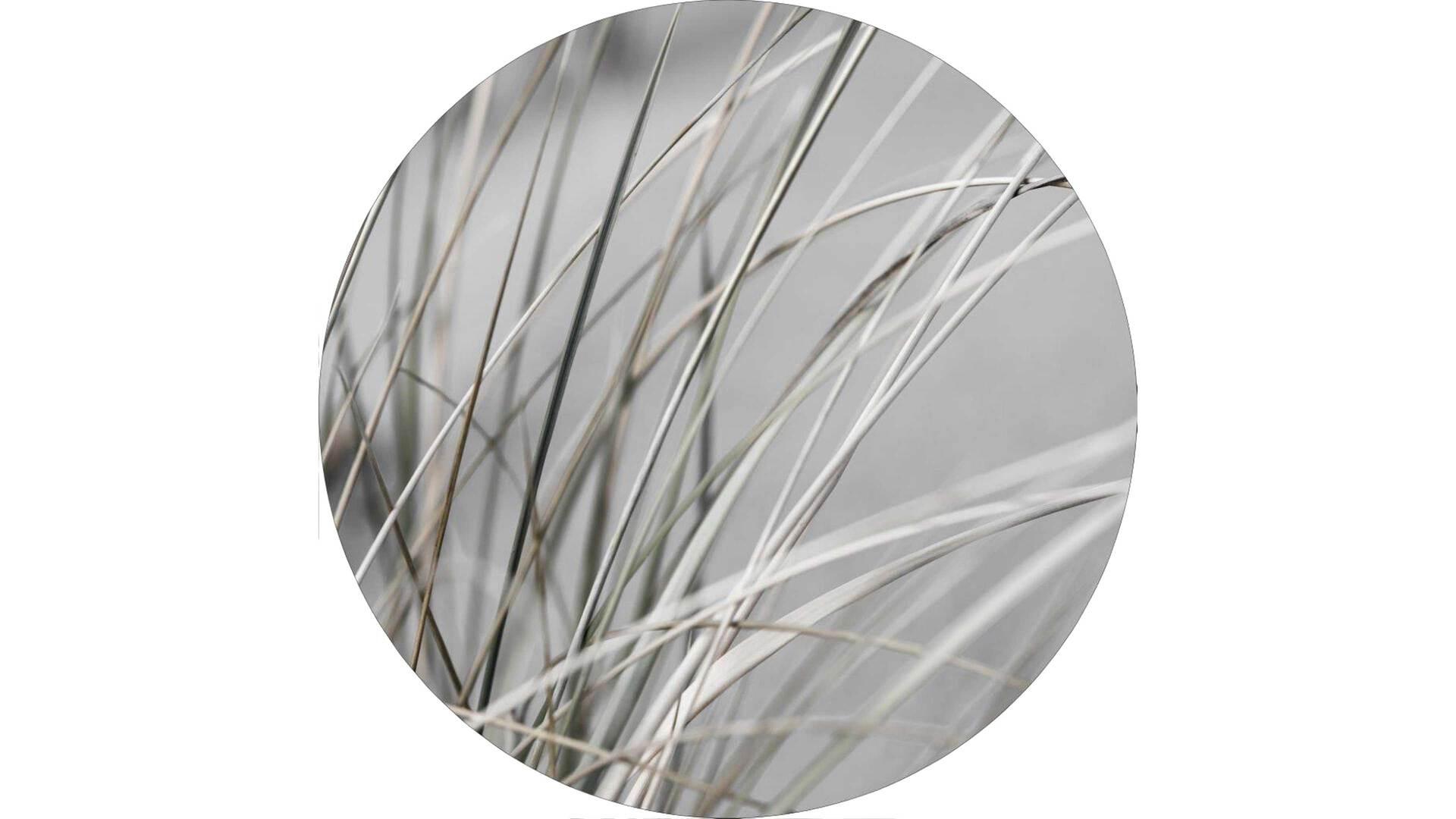 Interliving BEST BUDDYS! Kunstdruck Mellow Grasses 1